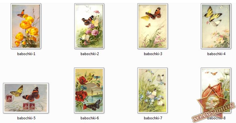 Открытки с бабочками