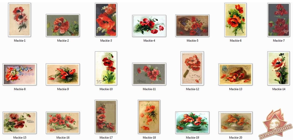 Красные маки на открытках