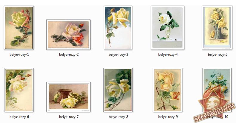 Розы на открытках